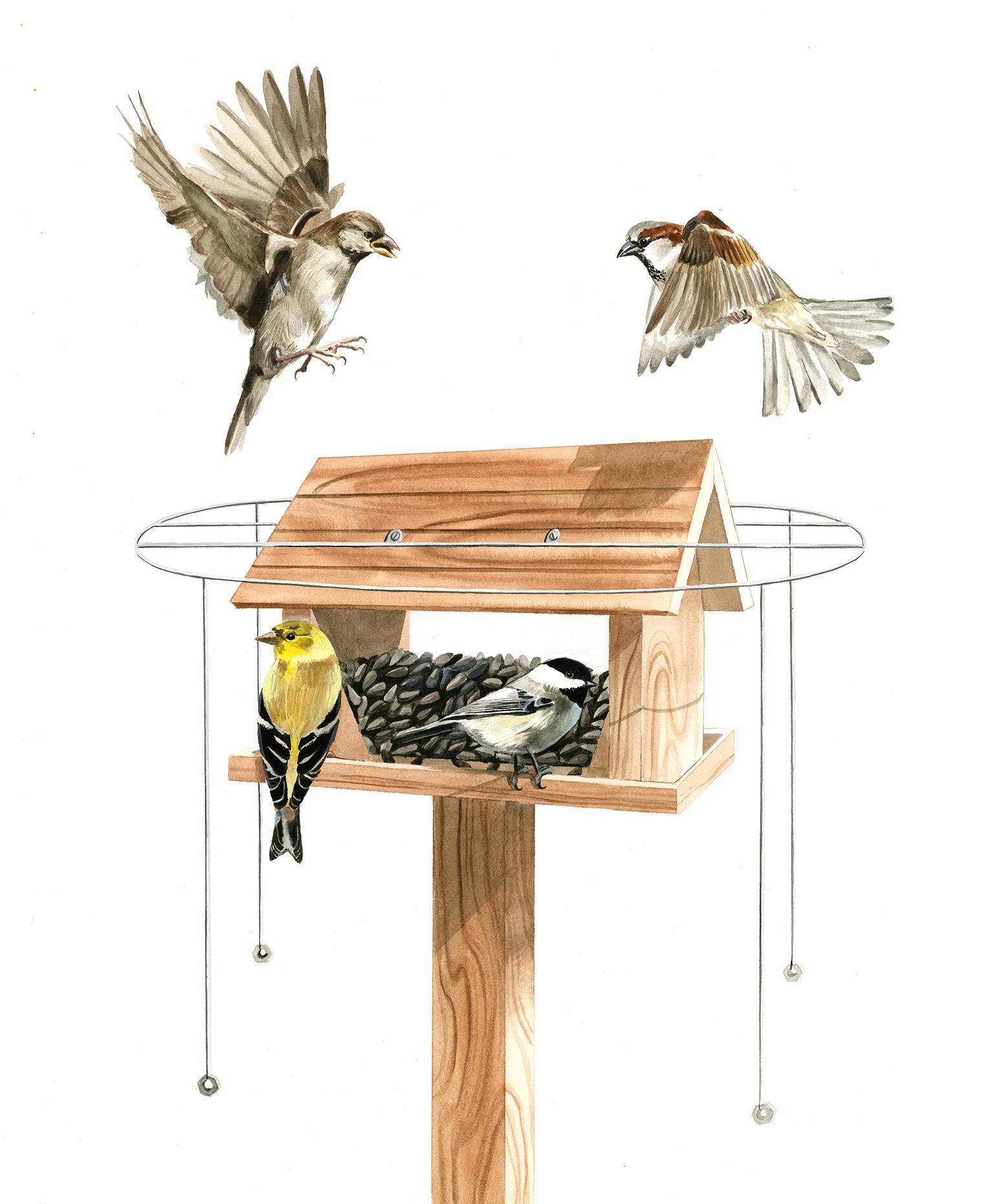 Threaded Wood Dowel, Bird House Plans Cornell, Pallet Table Diy Plans